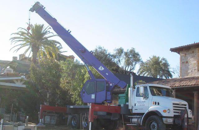tree trimming bucket truck rentals near me
